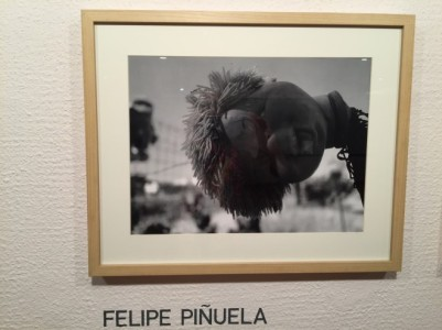 Una de las imágenes de Felipe Piñuela.